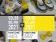 El color del año 2021 - Pantone Color of the Year 2021