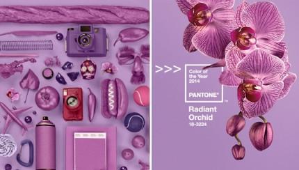 El color del año 2013 es el Pantone Radiant Orchid